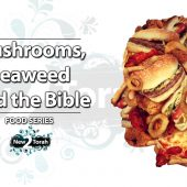 Mushrooms, Seaweed and the Bible