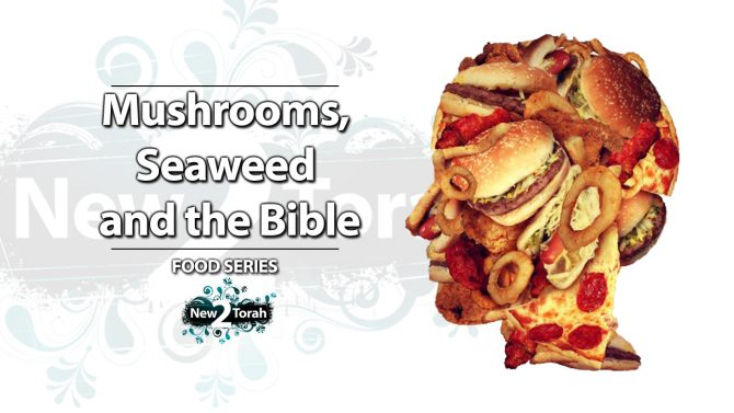 Mushrooms and the Bible