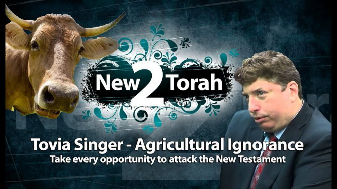 Tovia Singer Hebrew Roots