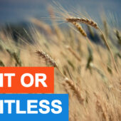 Fruit Or Fruitless? Interpreting The Parables Of The Bible